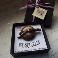 Red squirrel brooch,cold-cast copper,gift boxed, squirrel pin,British wildlife