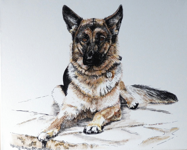 Bespoke Commission Pet Portrait Drawn in Pen & Ink From Customers Own Photograph