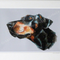 Doberman Dog- Quality A4 Mounted Art Print by Suzie Nichols