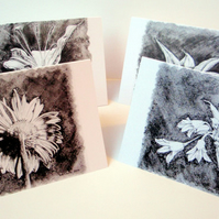 Black & White Flowers.Set of 8 blank artcards depicting artwork of Suzie Nichols