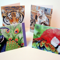 Wildlife. Set of 8 blank artcards depicting the artwork of Suzie Nichols