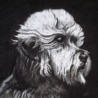 Dandie Dinmont - charcoal dog drawing
