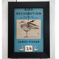 SALE Bird Recognition framed book page clock Pelican (1947)