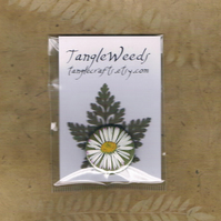 DAISY BADGE - common garden daisy, pressed flower pinback button badge