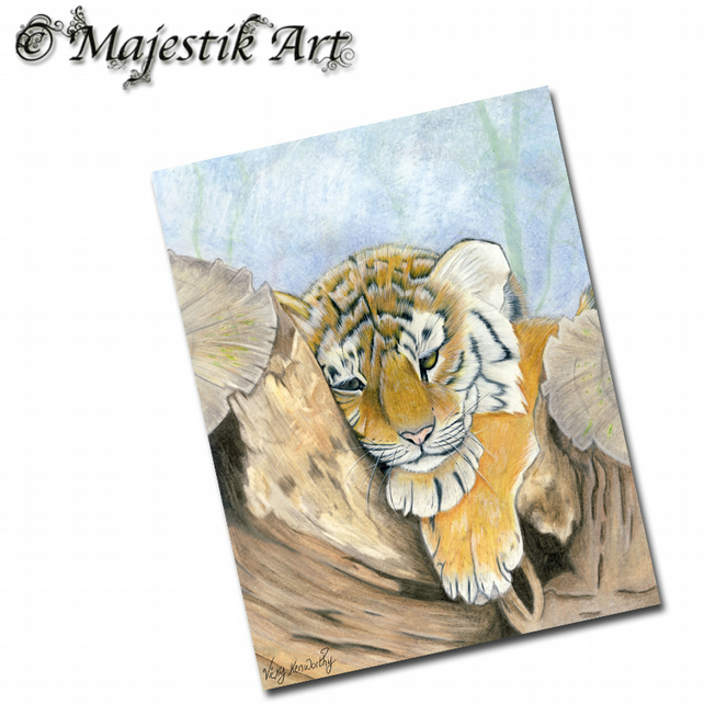 ACEO Print Tiger WEARY Big Cat Animal