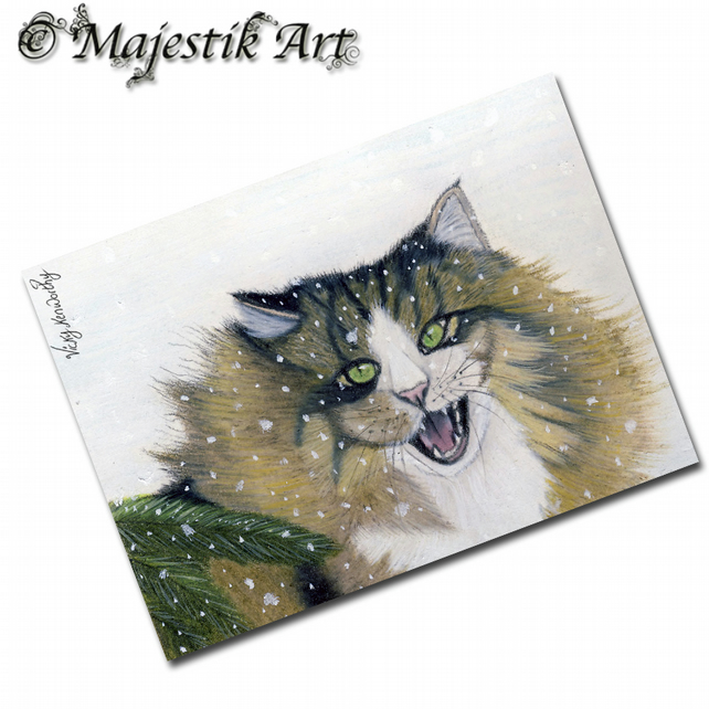 ACEO Print Cat Animal Pet Maine Coon Snow DISAPPROVE
