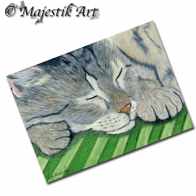 ACEO Print Sleeping Tabby Cat Feline Animal Pet DOZY