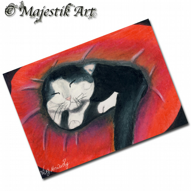 ACEO Print Tuxedo Cat Pet Animal Feline Kitten NEW BED