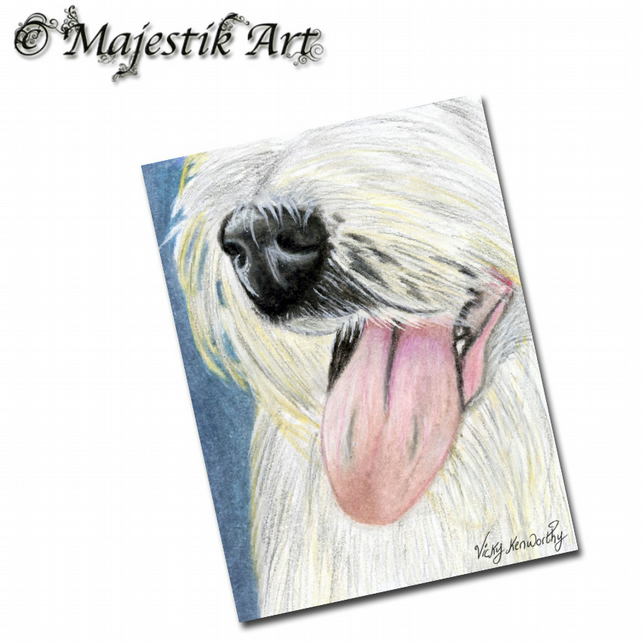 ACEO Print Old English Sheepdog Pet Animal Dog NOSEY