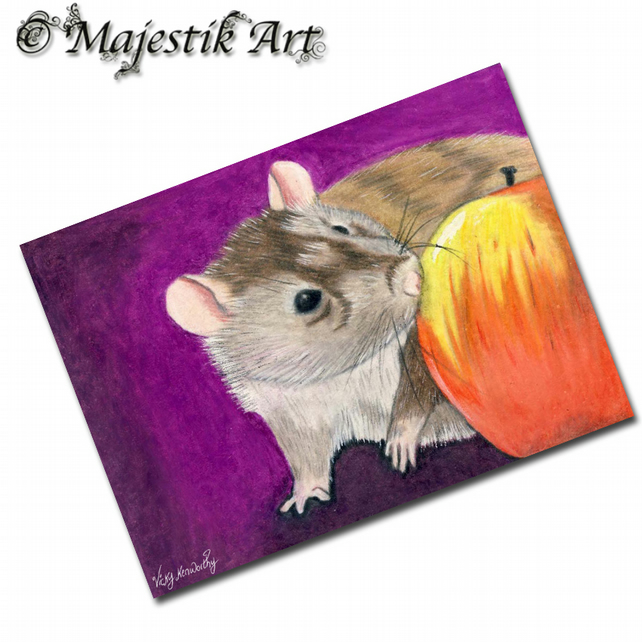 ACEO Print Rat Rodent Fruit Apple Animal FIVE A DAY
