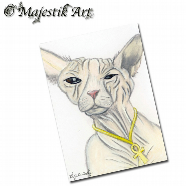 ACEO Print Furless Cat Pet Feline Animal SPHYNX