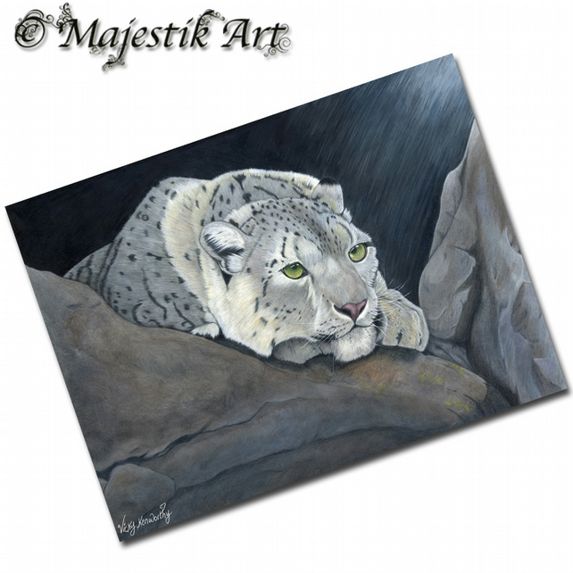 ACEO Print Snow Leopard CONSERVE Big Cat Animal
