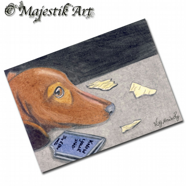 ACEO Print Dachshund Puppy Pet Animal Dog NOT GUILTY