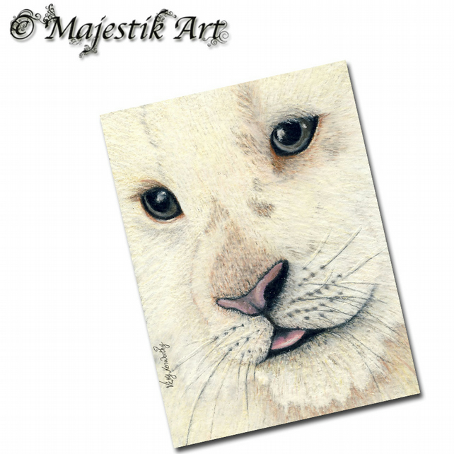 ACEO Print White Lion Cub Animal Wildlife PERFECT