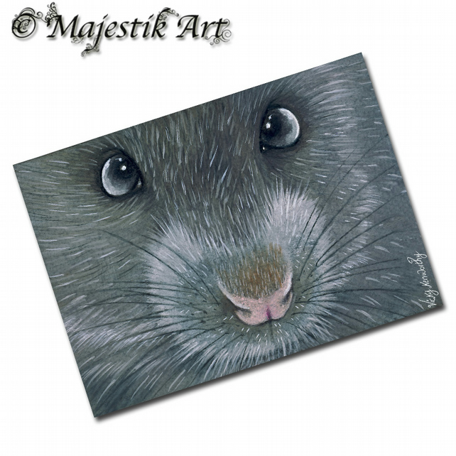 ACEO Print Rat WHY HELLO Rodent Pet Animal