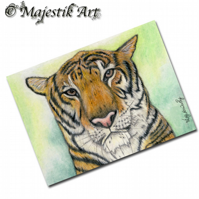 ACEO Print Tiger Wildlife Big Cat Animal CONTEMPLATION