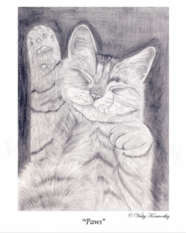 Tabby Cat Fine art Print A3 Archival PAWS Animal
