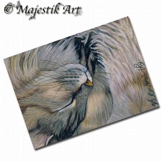 ACEO Print Maine Coon Kitty Cat Feline Pet Animal  GLAD THAT'S OVER