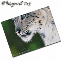 ACEO Print Snow Leopard Big Cat Feline Wildlife Animal  GLIMPSE