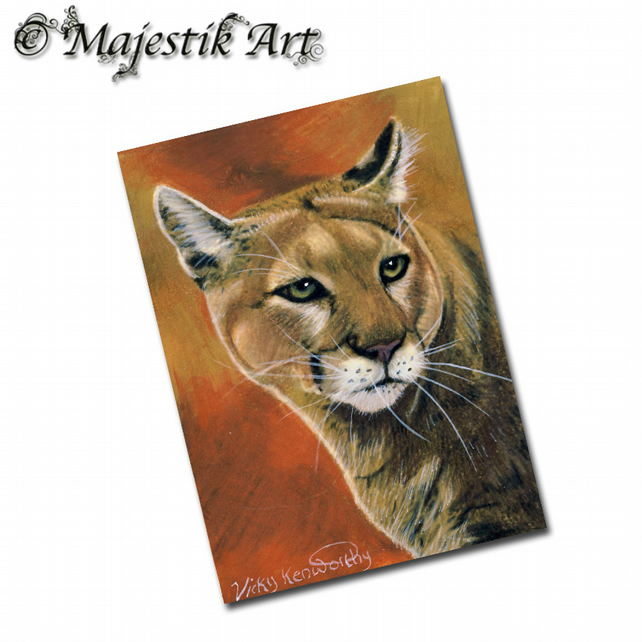 ACEO Print Mountain Lion Cougar Big Cat Feline Wildlife Animal  GLINT