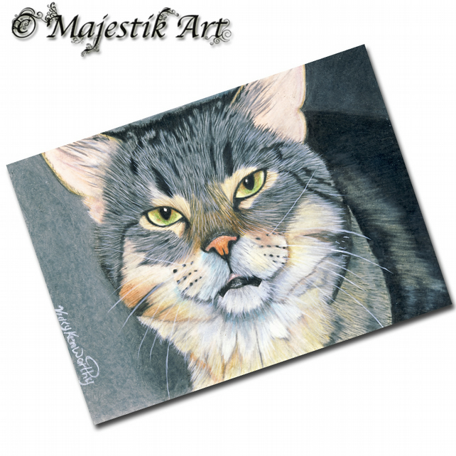 ACEO Print Tabby Cat Feline PLEASED TO MEET YOU