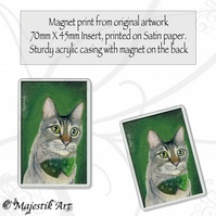 Irish Cat Magnet LUCKY Feline Pet Animal VK