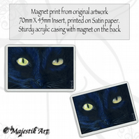 Black Cat Magnet PHANTOM Animal Feline Pet VK