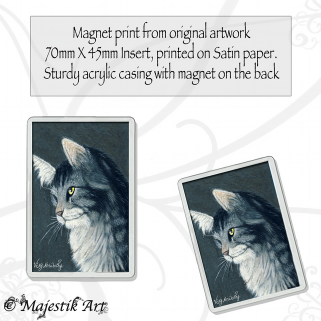 Maine Coon Magnet SULLEN  Cat Animal VK