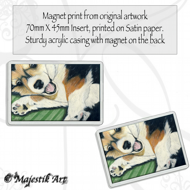 Corgi Magnet PLAY Puppy Dog Animal VK