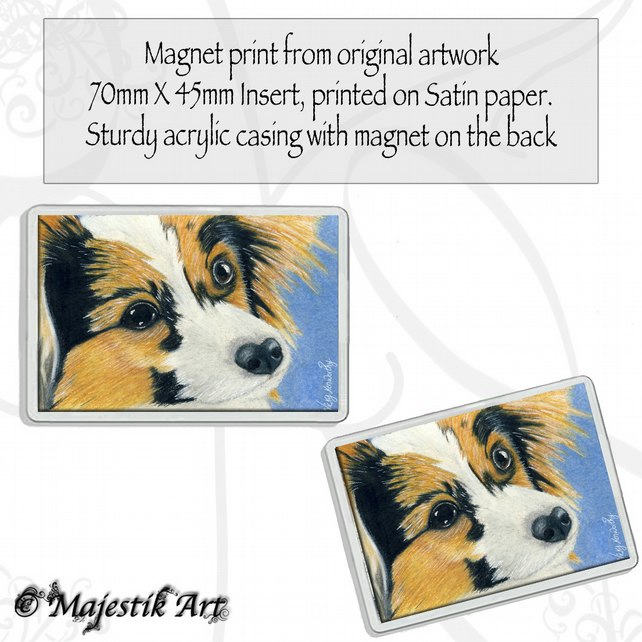 Papillon Magnet WHO ME Dog Animal VK