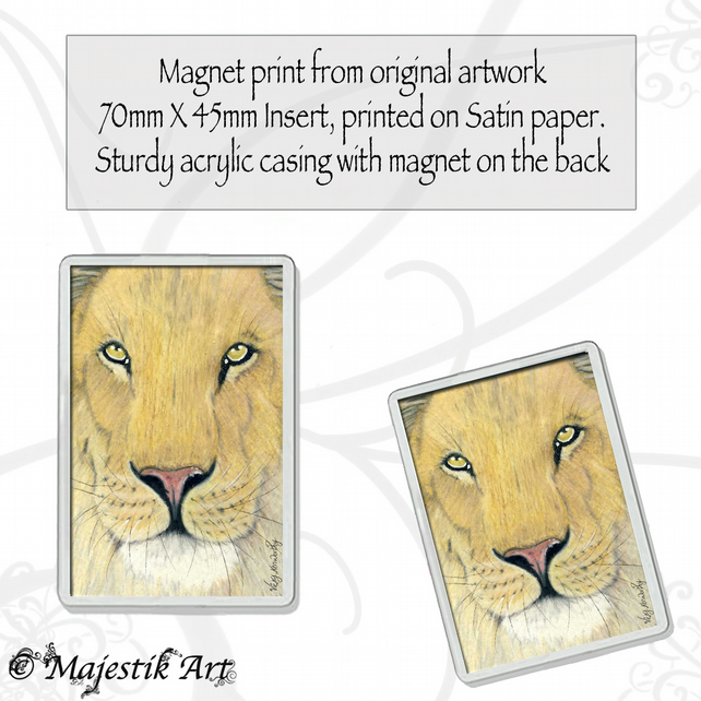 Lion Big Cat Magnet WAITING Wildlife Animal VK