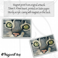 Tabby Cat Magnet THOSE EYES Feline Animal VK