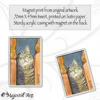 Tabby Cat Magnet HIDE AND SEEK Feline Animal VK