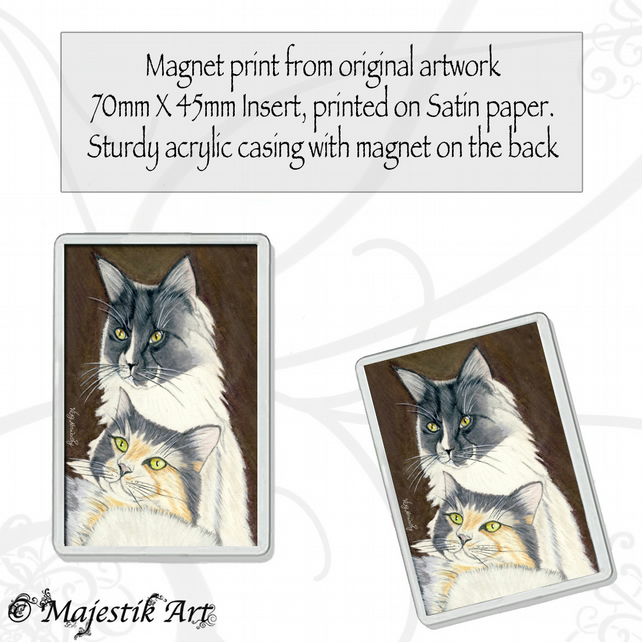 Maine Coon Magnet FOREVER Cat Pet Animal VK