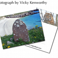 Stone ACEO Print Photography by VK