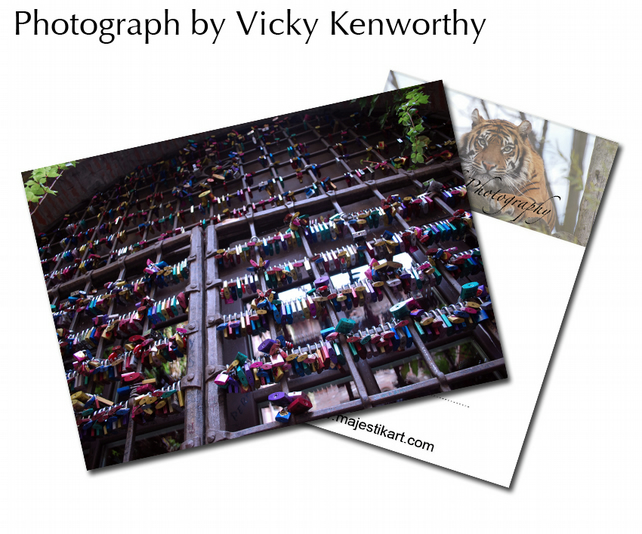 Padlocks ACEO Print Photography by VK