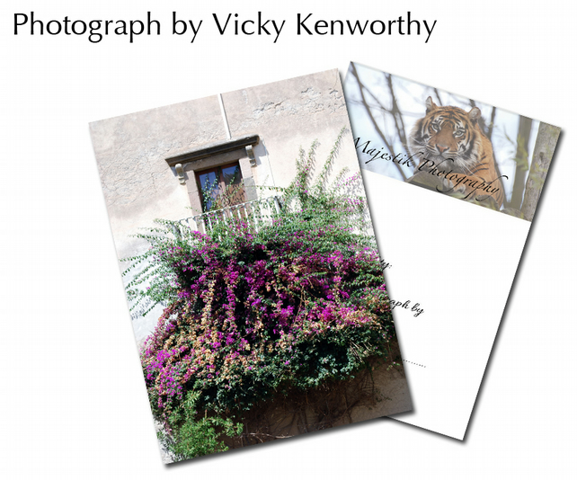 Flowers ACEO Print Photography by VK