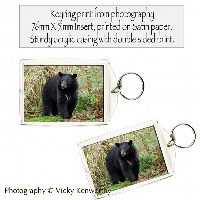 Spectacled Bear Keyring Photography by VK
