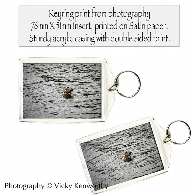 Seal Keyring Photography by VK