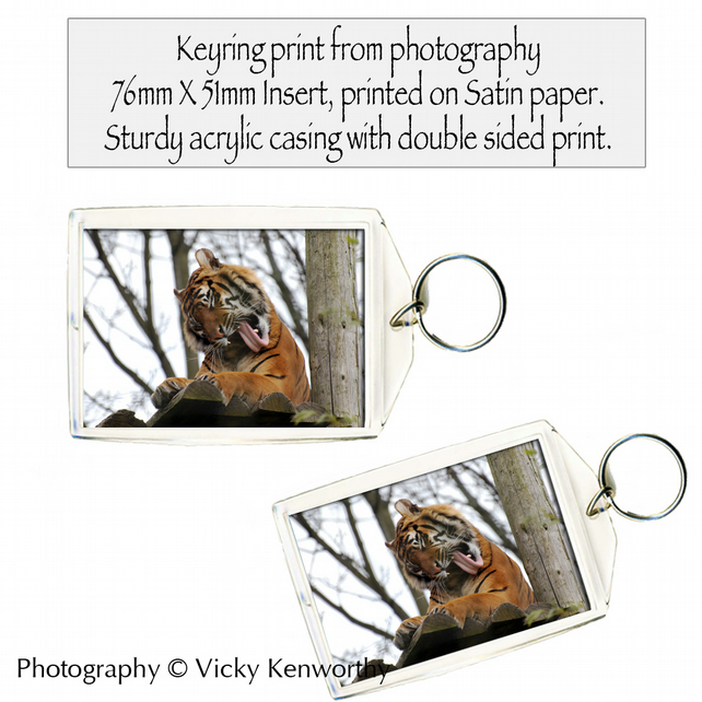 Tiger Keyring Photography by VK