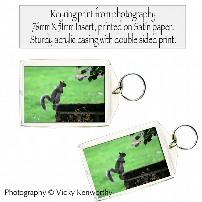 Squirrel Keyring Photography by VK