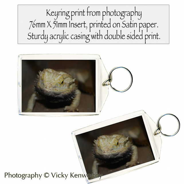Lizard Keyring Photography by VK