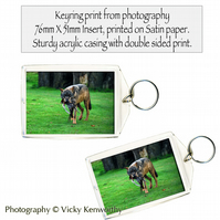 Wolf Keyring Photography by VK