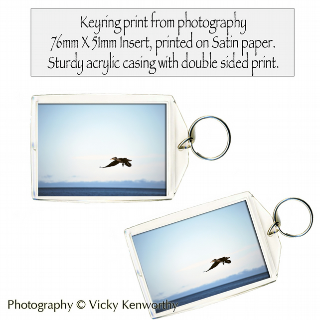 Cormorant Keyring Photography by VK