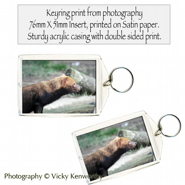Bush Dog Keyring Photography by VK