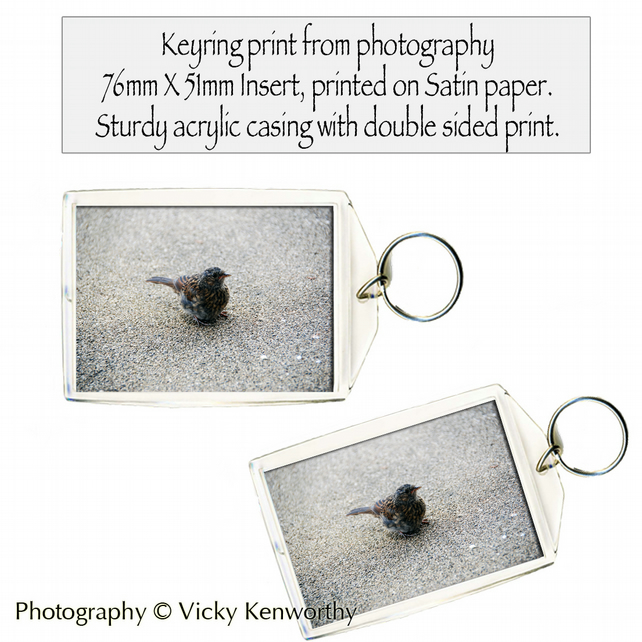 Bird Keyring Photography by VK
