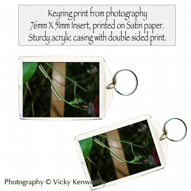 Caterpillar Keyring Photography by VK