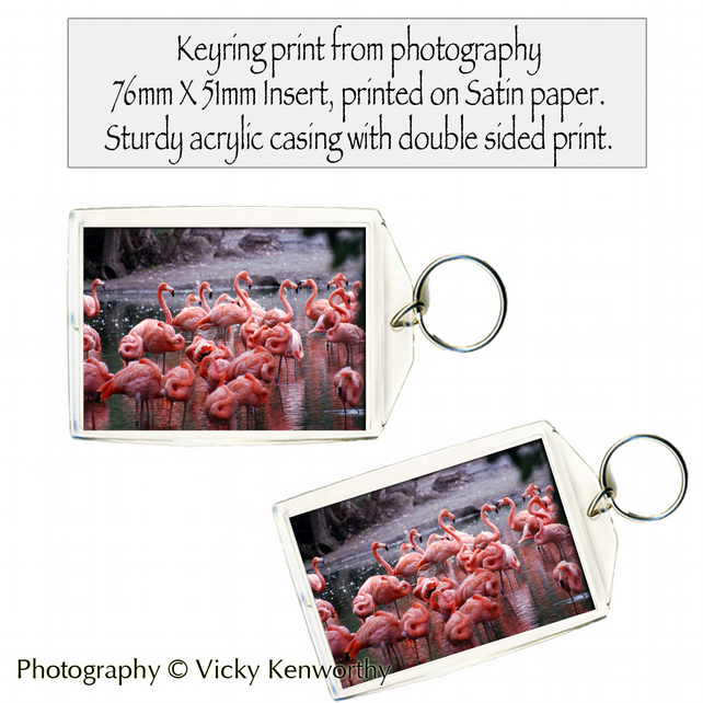Flamingo Keyring Photography by VK
