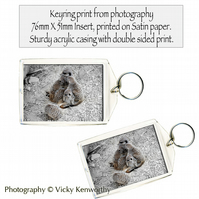 Meerkat Keyring Photography by VK