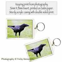 Raven Keyring Photography by VK